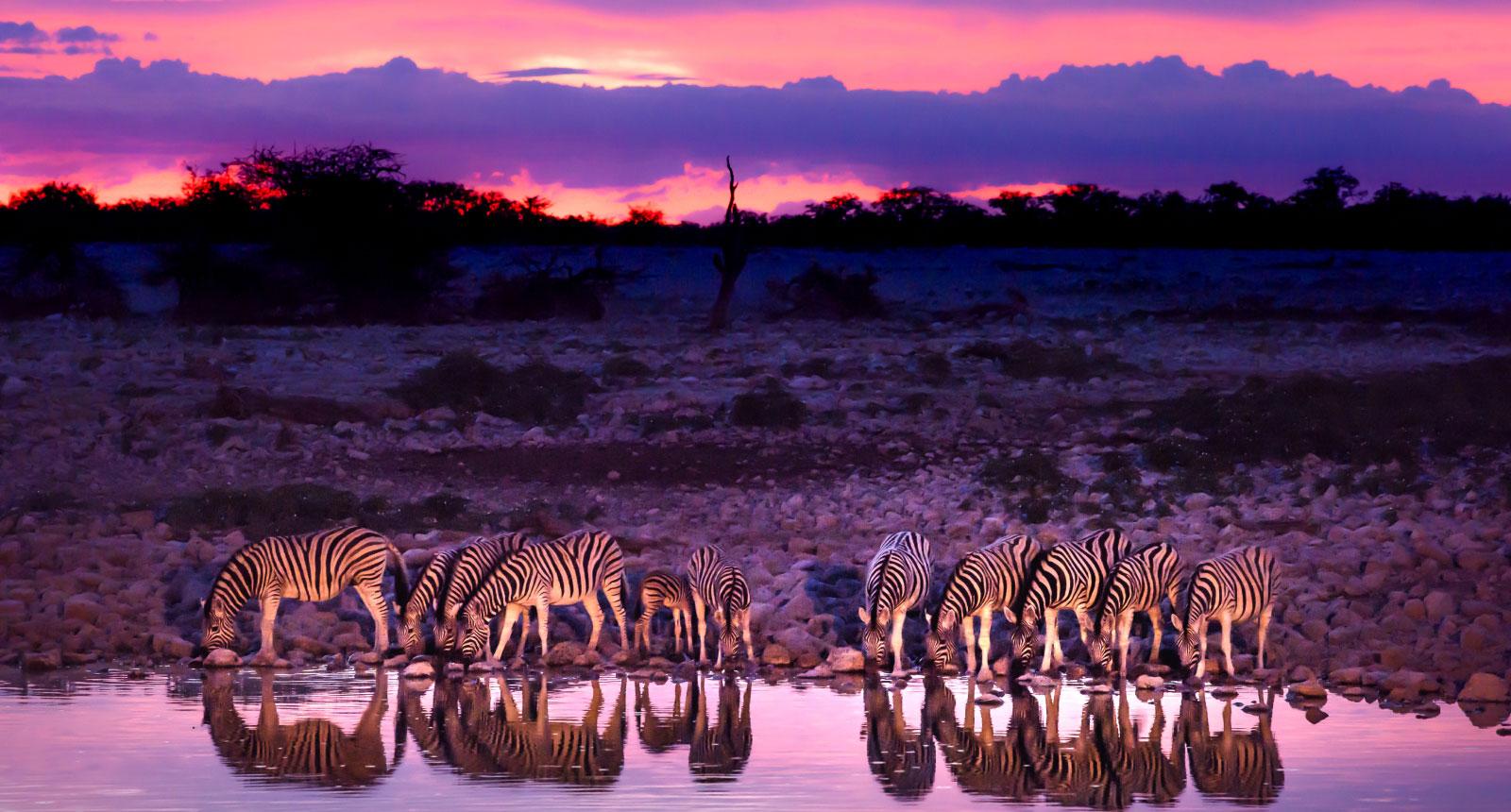 Taste of Namibia