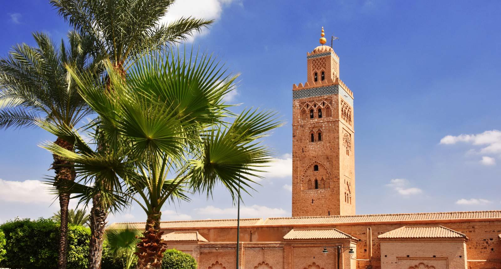 Amazing Marrakesh